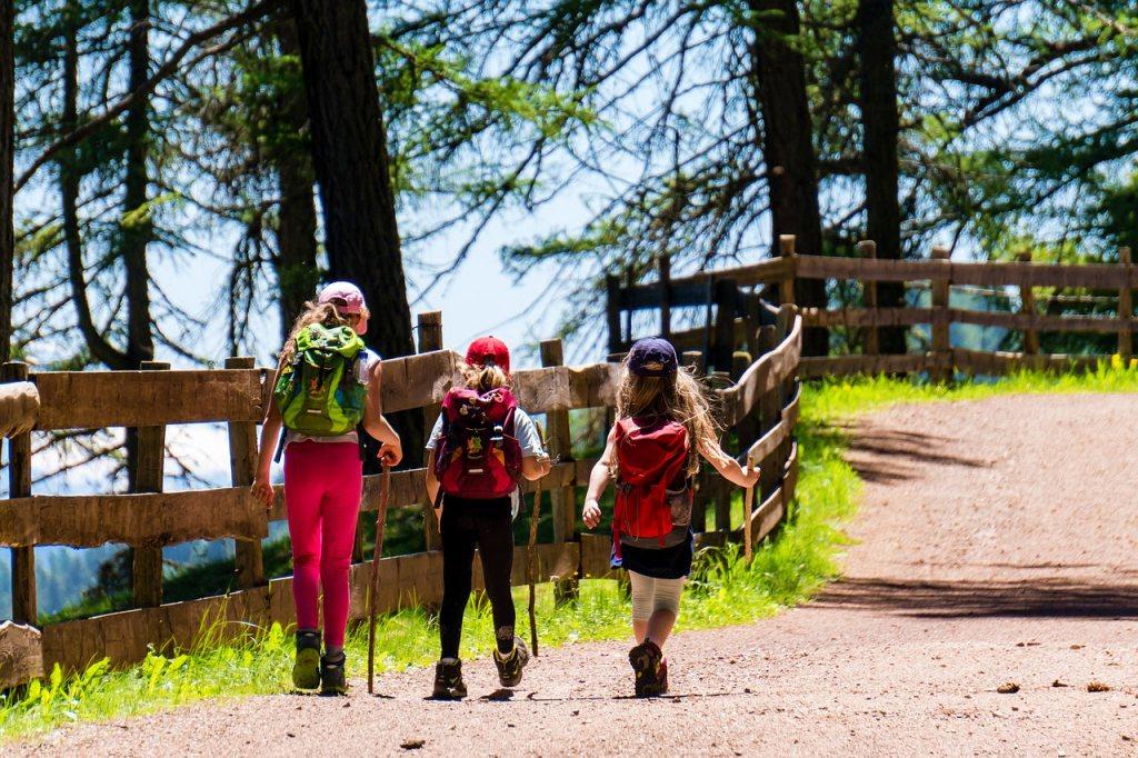 Consejos para disfrutar del bosque con niños